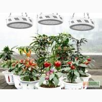 Светодиодная фитолампа для роста растений, теплиц, оранжерей, гроубоксов 147W
