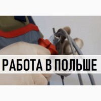 Новая Вакансия: ЭЛЕКТРИК. Легальная Работа в Польше для УКРАИНЦЕВ