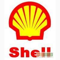 Масло компрессорное Shell Corena D 46