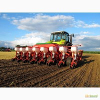 Продажа семян подсолнечника и кукурузы Тунка, Брио, Мегасан, Опера, Белла, ДК315, ДКС3511