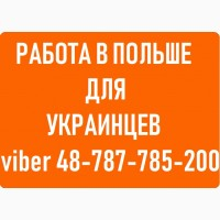 Работа в ПОЛЬШЕ для украинцев. Вакансии в ПОЛЬШЕ без посредников. Как выбрать агентство