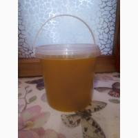 Продам мед мелким оптом на реализацию