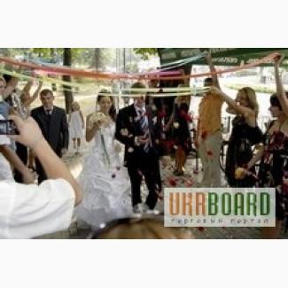 Тамада, живая музыка, баянист на свадьбу, день рождения, юбилей