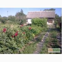 ПРОДАМ: участок 40 соток в с. Рославичи, Расчет в ГРИВНАХ