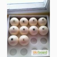Продам бильярдные шары поштучно