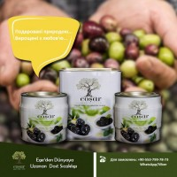 Фабрика из Турции ищет импортеров - оливки от ТМ Cosar Olive Turkey