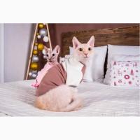 Продам кофту с рукавом для кошек, сфинкса, Кофта с рукавом Mikro - f Coffee