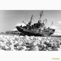 Рисовая мука применение при производстве изделий переработки рыбопродуктов