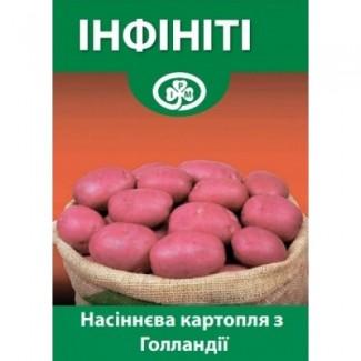 Семенной Картофель Инфинити Элита Голландия