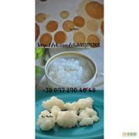 Продам индийский морской рис 20грн, чайный гриб 30-50грн, молочный гриб 50грн