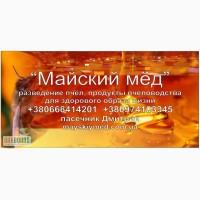 Пчелопакеты купить Украина