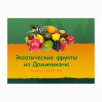 Замороженные экзотически фрукты высокого качества по доступной цене