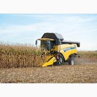 Уборка кукурузы. Аренда комбайна New Holland. Уборка кукурузы комбайном
