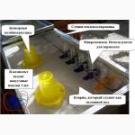 Клетка с подогревом для выращивания цыплят