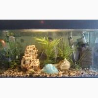 Продам б/y аквариум