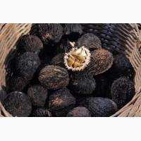 Семена чёрного ореха