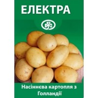 Семенной Картофель Электра Элита Голландия