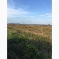 Продам земельный участок 8 га