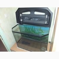 Срочно продам б/у аквариум