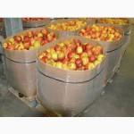 Евротара под яблоко от 100 кг