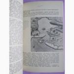 Жорж Блон.Великий час океанов. Индийский