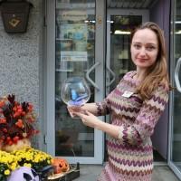 Живые бабочки - продажа готового бизнеса, франшиза, сотрудничество, партнерство