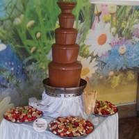 Шоколадный фонтан на праздник в Киеве