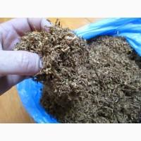 Табак берли и вирджиния, ферментированный, высшего качества.СЕМЕНА 20грн
