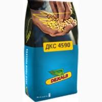 Семена кукурузы ДК 315, ДКС 3511, ДКС 4795, ДКС4590, ДКС 3711, ДКС 3151