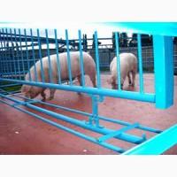 Покрытие для мест содержания животных