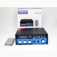 Усилитель BM AUDIO BM-600BT USB Блютуз 300W+300W 2х канальный Караоке