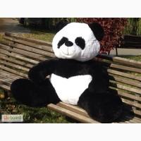 Панды плюшевые мягкие