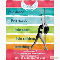 Pole dance studio Blue Heaven Дарница