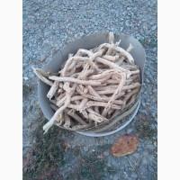 Корм для шиншил, з добавкою жмиха з насіння гарбуза