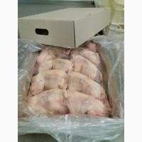 Тушки кур несушки (продам на експорт)