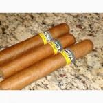 Кубинські сигари Коіба