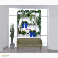 Уход за комнатными растениями, консультации по уходу