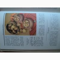 Продам книгу Русская кухня.традиции и обычаи