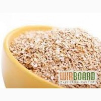 Закупаем отруби пшеничные, макуху