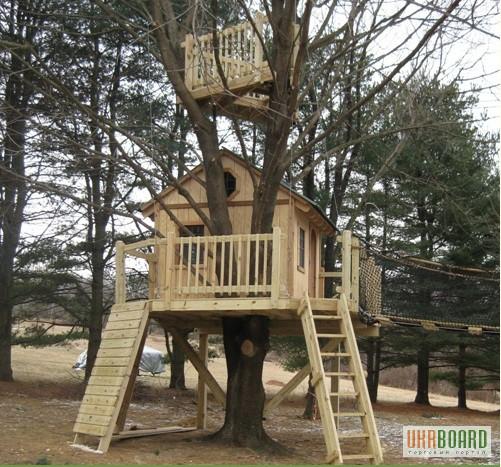 все о деревьях знакомить детей