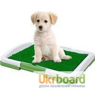 Горшок для собак, туалет для домашних животных Potty Pad For Dogs