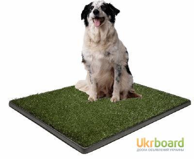 Фото 3. Горшок для собак, туалет для домашних животных Potty Pad For Dogs