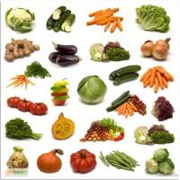 Семена овощей оптом в Украине