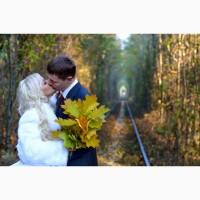 Видео-фотосъёмка свадеб. Фотограф, видео оператор, видеограф. Ровно, Львов, Луцк, Житомир