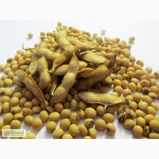 Семена Сои Конор устойчивой к Раундап (Roundup)