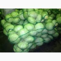 Продам капусту белокочанную