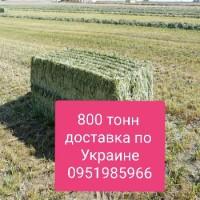 СЕНО с доставкой по Украине. Звоните, договоримся