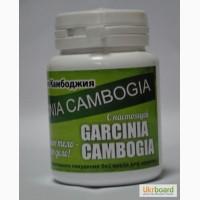 Купить Garcinia Cambogia Экстракт для быстрого похудения оптом от 50 шт
