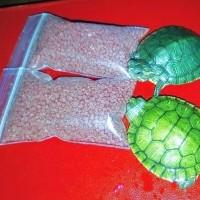 Многие мечтают завести себе красноухую черепаху! Заказывайте прямо сейчас с доставкой