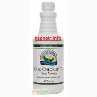 Хлорофилл жидкий NSP/НСР Люцерна сок- БАД для повышения гемоглобина при анемии